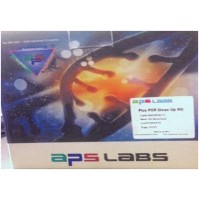 APS Lifetech Plasmid Miniprep Purification Kit ( Reaction : 50r )