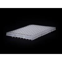 Abdos PCR Plates Family, PP,Unskirted standard well, 96 well, ( Pack of 10 plates )