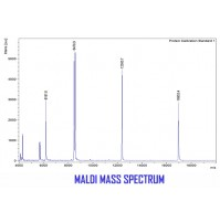 Protein Molecular Weight Determination Using MALDI